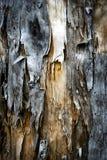 Postrzępiony stary wietrzejący drewno Obraz Royalty Free