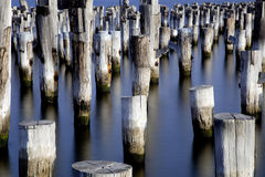 Posts of an abandoned pier Royalty Free Stock Images