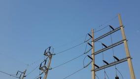 Posts de la electricidad Imagenes de archivo