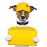 Posts de la entrega del perro Fotografía de archivo