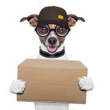 Posts de la entrega del perro fotografía de archivo libre de regalías