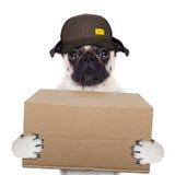 Posts de la entrega del perro Imagen de archivo libre de regalías