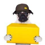 Posts de la entrega del perro Imagen de archivo