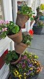 Posts de la flor apilados Imagen de archivo libre de regalías