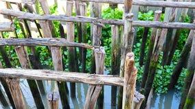 Posts de madera en el río Foto de archivo libre de regalías