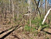 Posts de madera de la linterna en camping abandonado Foto de archivo libre de regalías