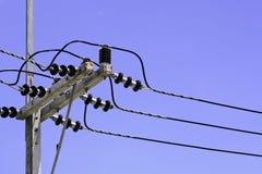 Posts eléctricos Fotos de archivo