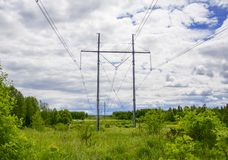 Posts with electric wires. In the forest Stock Photo