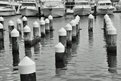 Posts in Melbourne harbour. Stock Image