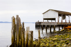 Posts from an old dock by the sea Stock Images
