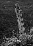 Posts resistidos de la cerca de la pradera Fotografía de archivo