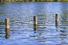 Posts in water Stock Image