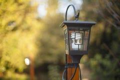 Posts y luz de la lámpara Sun que fija sobre una cubierta de madera en un otoño Imágenes de archivo libres de regalías