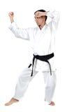 Postura de los artes marciales fotografía de archivo libre de regalías
