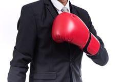 Postura ereta do homem de negócios com luvas de encaixotamento Fotografia de Stock Royalty Free