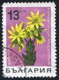 Postzegel stock illustratie