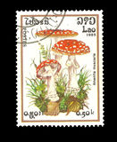 Postzegel: Laos 1985, AMANIET MUSCARIA Royalty-vrije Stock Afbeeldingen