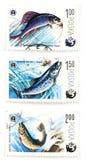 Postzegels met hengelsport en F royalty-vrije stock foto