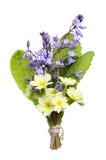 Posy av blommor royaltyfri foto