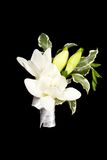 Posy bouquet. With white flower Royalty Free Stock Photography