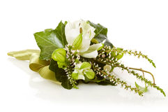 Posy bouquet. Isolated on white background Stock Images