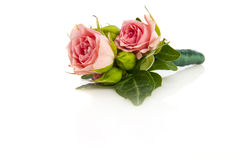 Posy bouquet. Nice wedding rose posy bouquet on white Royalty Free Stock Images