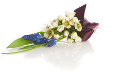 Posy bouquet. On a white background Royalty Free Stock Image