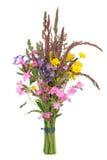 Posy da flor selvagem imagens de stock royalty free