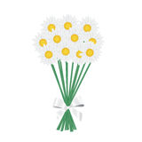 A posy of daisies tied with a white ribbon. Vector illustration Royalty Free Stock Photo
