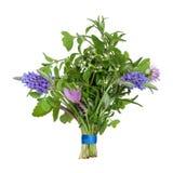 Posy del foglio dell'erba e del fiore fotografia stock