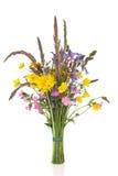 Posy del Wildflower della sorgente Fotografie Stock Libere da Diritti
