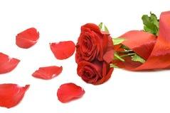 Posy des roses image libre de droits