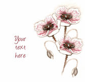 Posy hand drawing. On a white background Royalty Free Stock Image