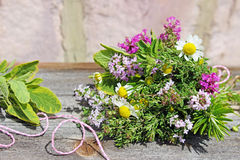 Posy of herbs. A posy of different fresh herbs lies on a wooden table Royalty Free Stock Photos