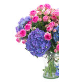 Posy of pink roses and blue hortensia flowers close up. Posy of of fresh pink roses and blue hortenzia flowers close up in glass vase isolated on white royalty free stock images