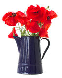 Posy of poppy flowers Royalty Free Stock Photos