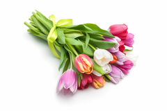 Posy of spring tulips flowers. Isolated on white background Stock Photo