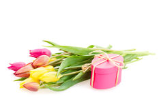 Posy of tulips flowers with gift box. Posy of spring  tulips flowers with gift box  isolated on white background Royalty Free Stock Photography