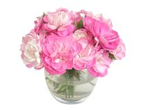 Posy in vase. Posy of pink carnations in glass vase with white background Royalty Free Stock Images