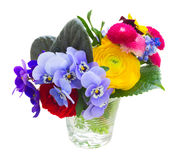 Posy of violets, pansies and ranunculus Royalty Free Stock Image