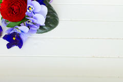 Posy of violets, pansies and ranunculus Stock Images