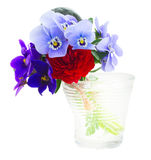 Posy of violets, pansies and ranunculus Stock Image