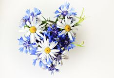Posy of white and blue flowers Stock Photography