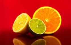 poszczególne owoce Zdjęcie Stock