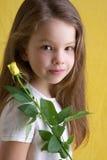 Potência de flor Imagens de Stock Royalty Free