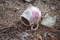Pot abandonné de porcelaine givré Images stock
