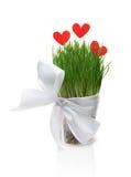 Pot avec des coeurs d'herbe et de papier Photos stock