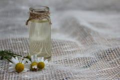 Pot avec l'huile végétale et la camomille Photographie stock libre de droits