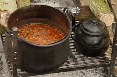Pot avec la goulache images stock