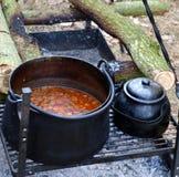 Pot avec la goulache image stock